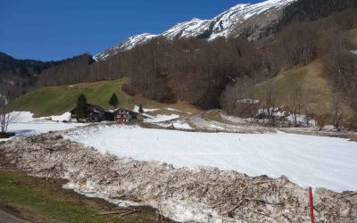 Avalanche as a geomorphic agent at Leue (municipality of Au)